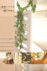 fukuoka-hakata-lei_nani.jpg