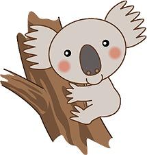 koalaku.jpg