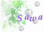 sapporo-sawa.jpg