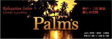 palmsmain.jpg