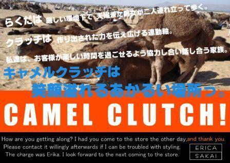 camelclutchDM2.jpg