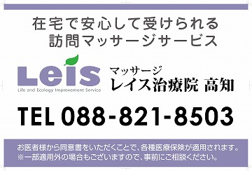 20140514_leis.jpg