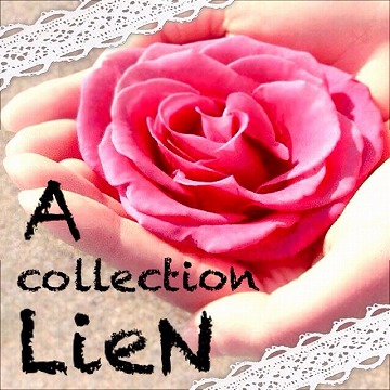 a-collection-lien.jpg