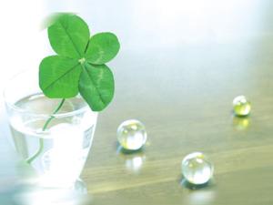 osaka-minato-green3.jpg