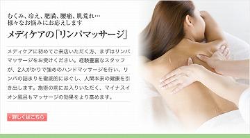main_rinpa.jpg