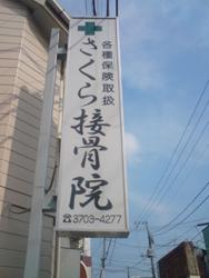 setagayaku-sakura.jpg